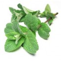 PepperMint E-liquid